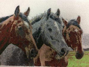 horses-stitchout